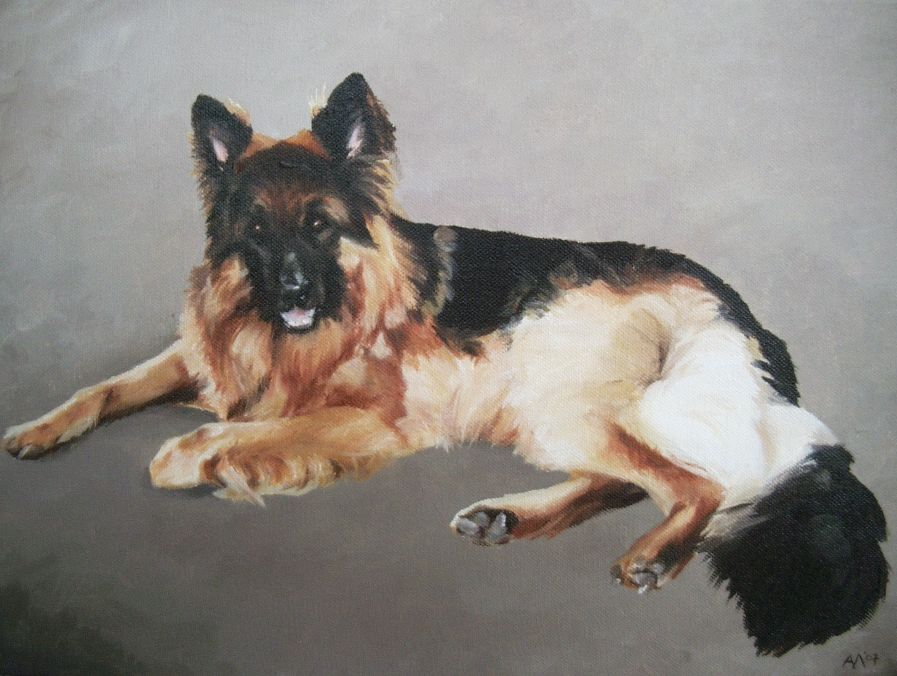 Dog portrait, 2007