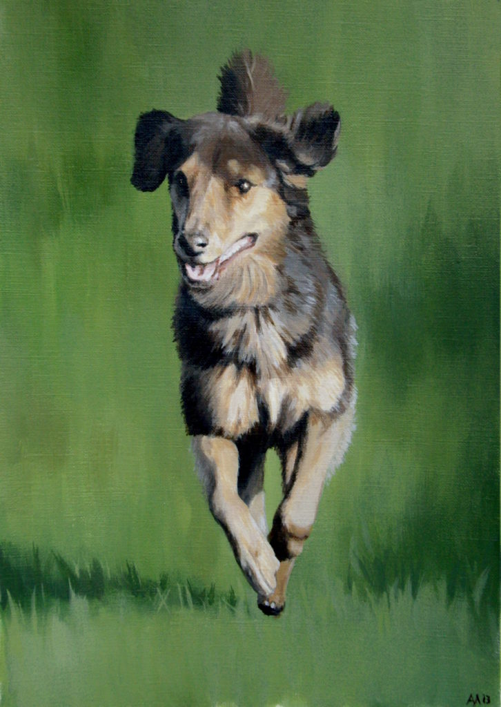 Dog portrait, 2013